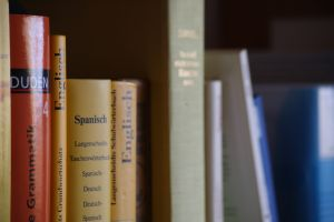 language books Why I Write Essay: Folly Folly and Fumble Free